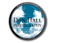Donhall Photography